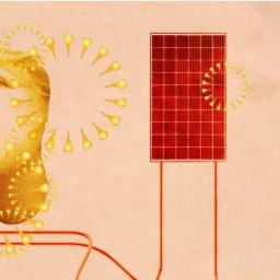 🎧 Paneles solares en casas. Tendencia!?